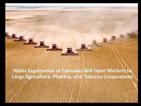 Applying Bitcoin Blockchain to Cannabis Genetics