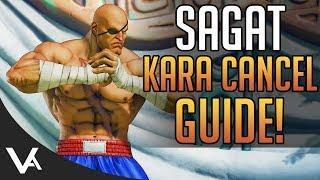 SFV - Sagat Kara Cancel Guide! Combos & Examples For Street Fighter 5 Arcade Edition