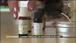 Comment repousser les moustiques au naturel ?