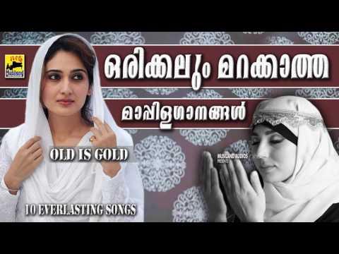 ഒരിക്കലും മറക്കാത്ത മാപ്പിളഗാനങ്ങൾ | Old Is Gold Malayalam Mappila Songs | Pazhaya Mappila Pattukal