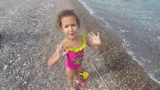 Denizde yüzme keyfi sualtı balıklar, eğlenceli çocuk videosu