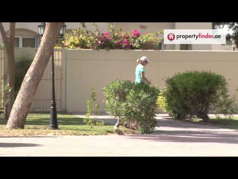 The Springs Community Video, Your guide to buying or renting in the Springs   propertyfinder.ae