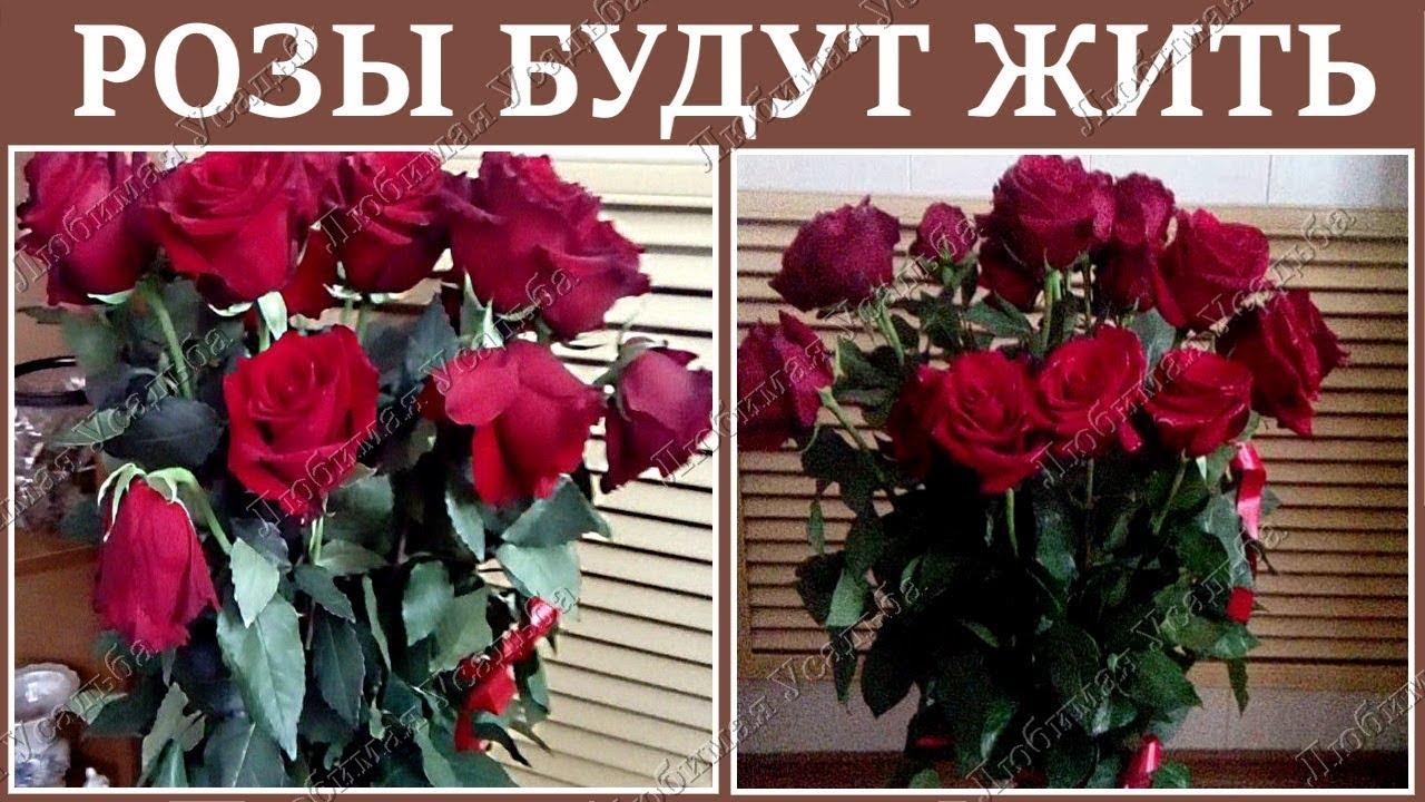 17 сен 2014. Уточнить наличие и заказать можно здесь: http://posudaclub. Kiev. Ua/ chainye_nabory/3072-chajjnyjj-nabor-17-pr. Html самый большой.