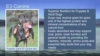 E3Live - E3 Canine: Superior Nutrition for Puppies and Adult Dogs