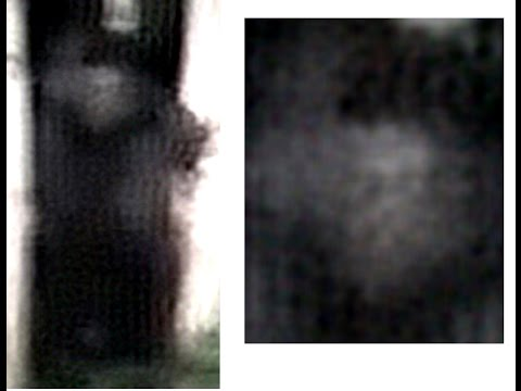 "Analysis - Video ""Bigfoot Sighting near Sundance Utah"" posted by AnythingWhatever - Real or Hoax?"