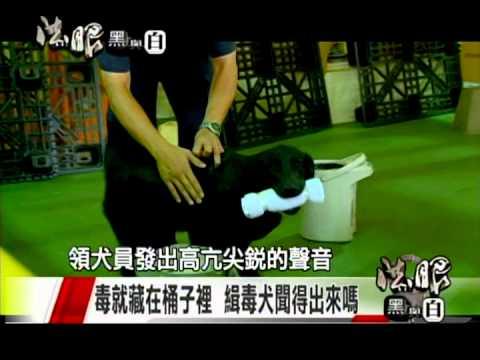 法眼黑與白-國境緝毒特別報導2(訓練緝毒犬)