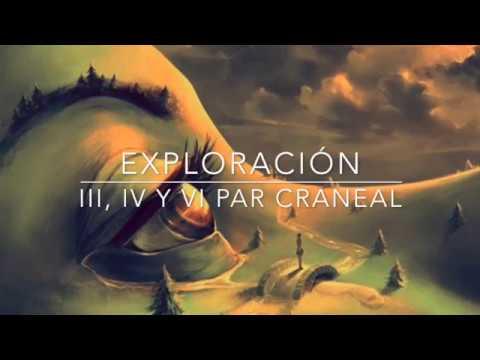 exploración III, IV, VI NC
