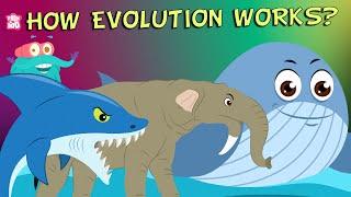 What Is Evolution? - Compilation | The Dr. Binocs Show | Non Stop Episodes | PEEKABOO KIDZ