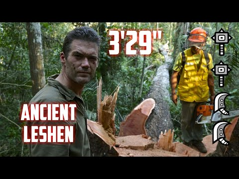 "[Monster Hunter World] 9☆ Contract: Woodland Spirit - Ancient Leshen - 3'29"" thumbnail"