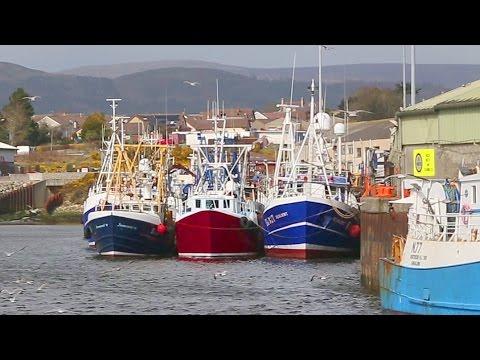 Fisheries Management In Northern Ireland | 03