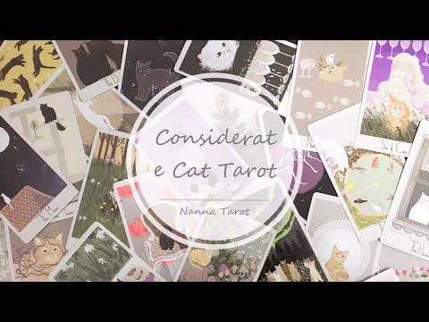 開箱  溫柔貓塔羅牌 • Considerate Cat Tarot // Nanna Tarot