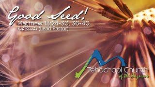 Good Seed 07 12 2020