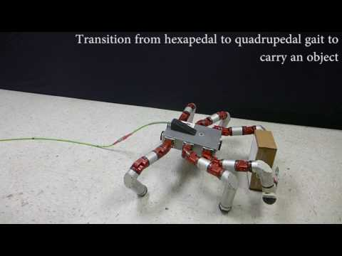 Download Youtube: Generating Gaits for Simultaneous Locomotion and Manipulation