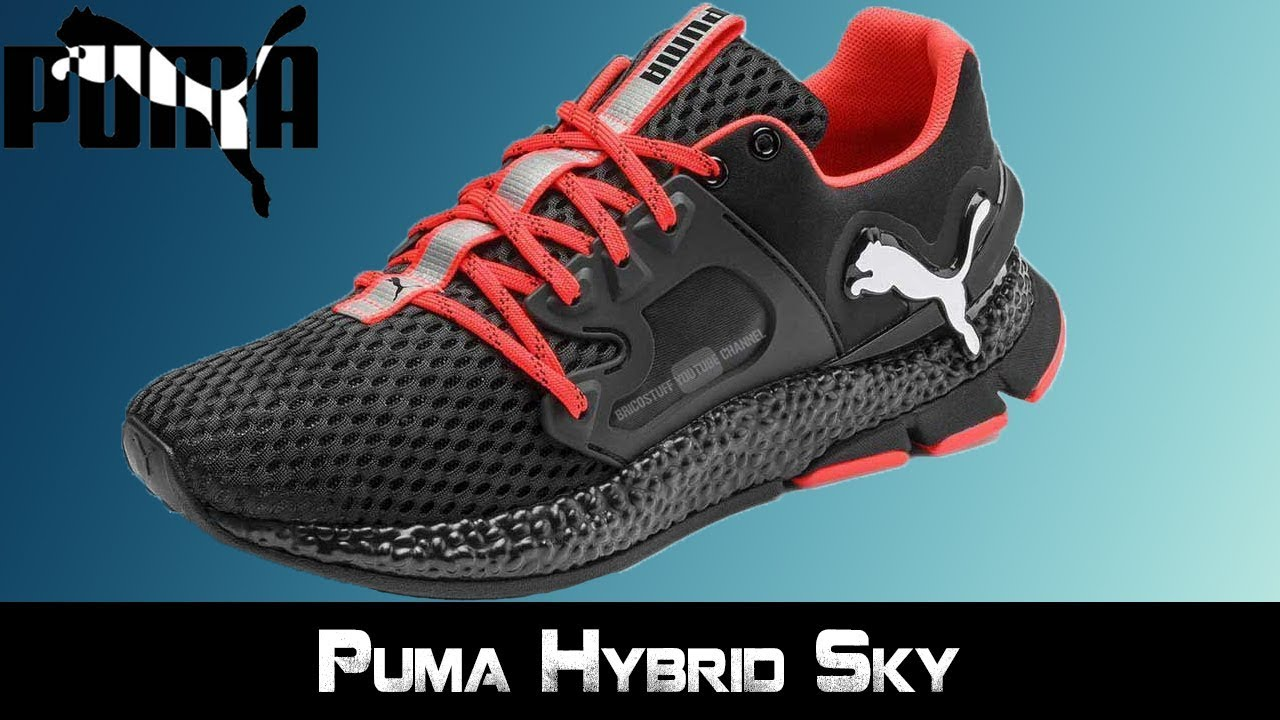chaussure puma lewis hamilton