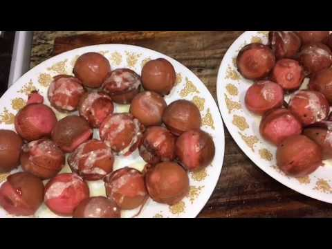 Watermelon Donut Holes! Ft. Alexis | KK Sweets #1