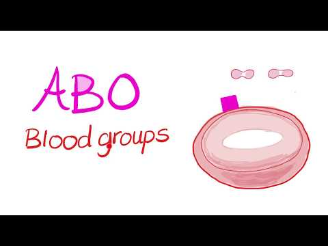 Blood Types (ABO system)
