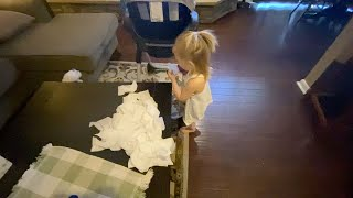 Baby Blames Her Mess On Dog