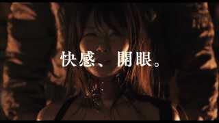 日本映画史上、最も過激で、最も官能的な映画「花と蛇」が帰ってくる 20...