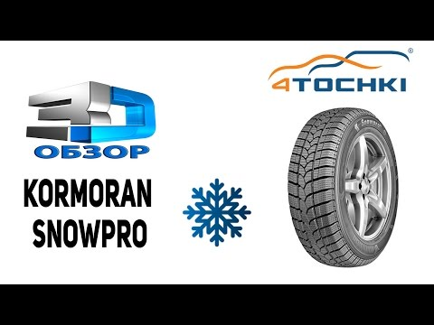 3D-обзор Kormoran Snowpro