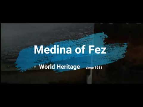 Medina of Fez - Site management report during COVID-19