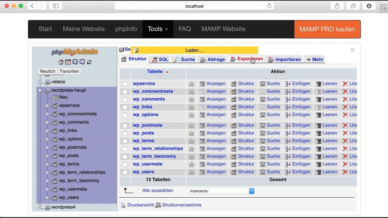 WordPress Datenbank vom localhost exportieren - YouTube