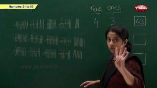cbse class 1 maths   cbse maths chapter 8 numbers 21 to 50   ncert   cbse syllabus   maths grade 1