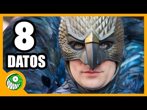 8 Curiosidades Sobre BIRDMAN