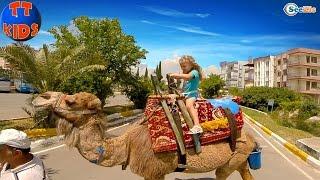 Кукла Ненуко. Ярослава катается на верблюде. Прогулка к Водопаду - Видео для детей. Nenuco Doll
