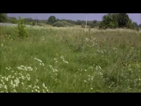 Продам земельный участок 20 соток в д  Лыткино, Тарусский район, Калужская область