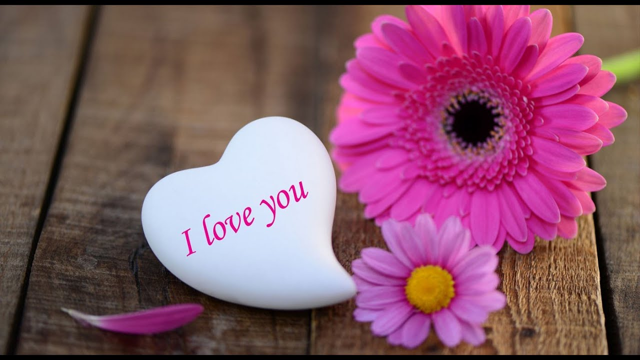 happy valentines day wishes 2016 valentines day whatsapp video valentines day greetings sms 8 youtube - Valentine Day Wishes