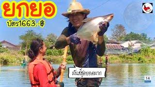 ยกยอ บ่อปลาลุงจุ้ง ►Fishing lifestyle Ep.447