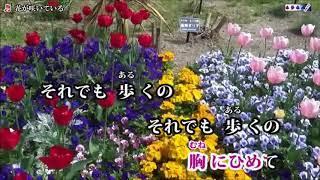 (新曲) 花が咲いている/石川さゆり cover eririn