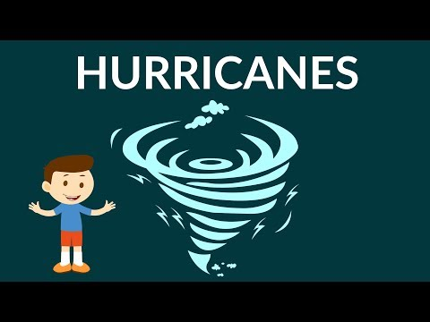 What Is A Hurricane And Where Does It Form? | Hurricane Video For Kids