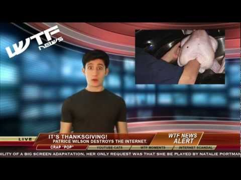 wtf-news-thanksgiving-edition-nicole-westbrook---hamlin-street-productions---bird-tank