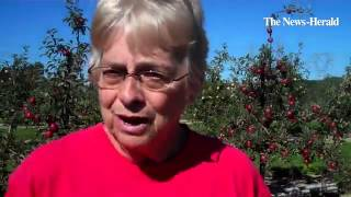 Discover some apple varieties at Patterson Fruit Farm