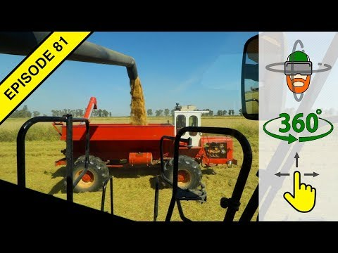 Harvesting Rice in Virtual 360º Action! | Harvest 2018