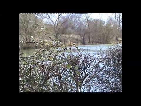 12-03-13 - The Thames Path {part 2} - Abingdon To Northmoor