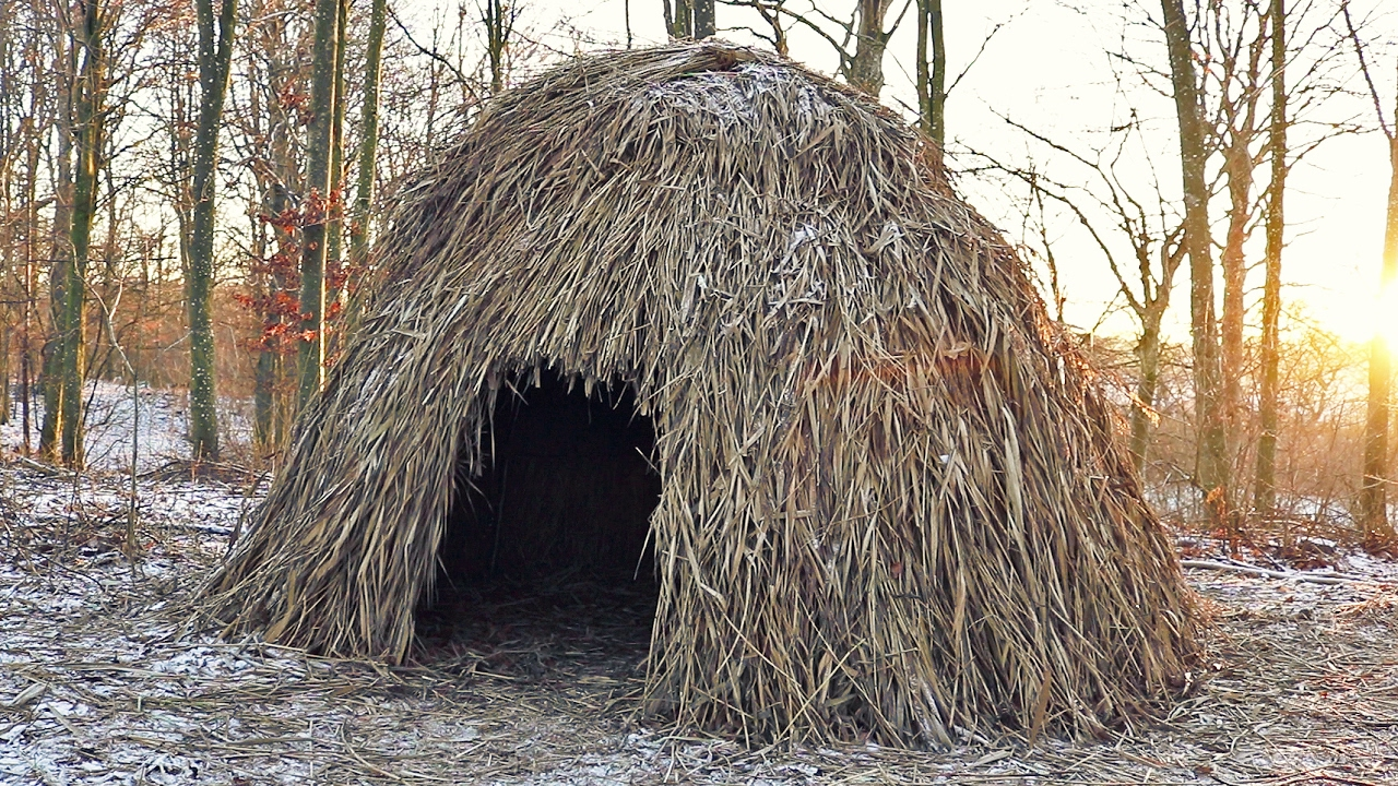 Building A Shelter Thatched Hut Youtube