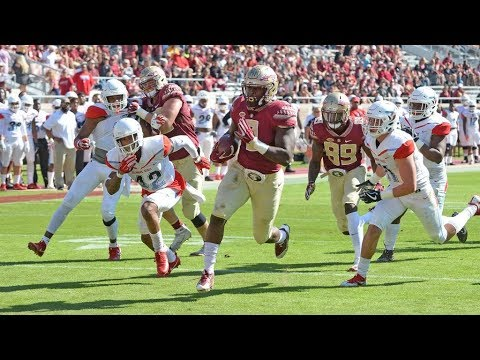 FSU vs. Delaware State Highlights
