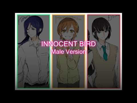 AZALEA-INNOCENT BIRD[Male Version]