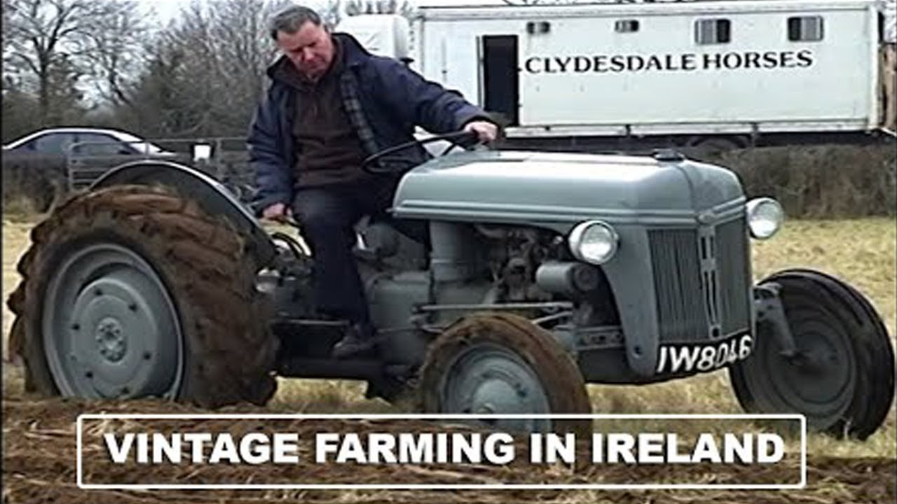 Traditional Farming in Ireland - Growing & Harvesting Oats - Threshing