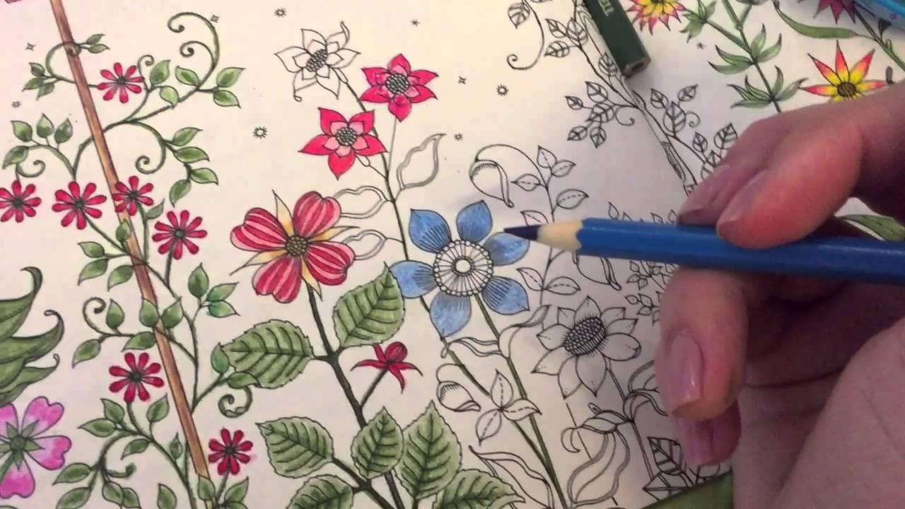 Dicas para pintar o jardim secreto - YouTube