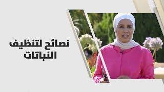 م. أمل القيمري - نصائح لتنظيف النباتات