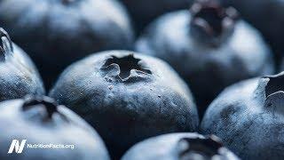 Přínosy borůvek proti srdečnímu onemocnění