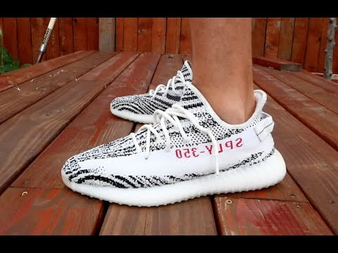 Adidas Yeezy Zebra Pick Up, Review & On Feet!!