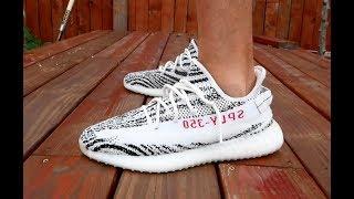 Adidas Yeezy Zebra Pick Up, Review & On Feet!!