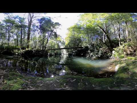 Outdoor nature environment - 360 Video [Royalty Free Stock Footage] $350