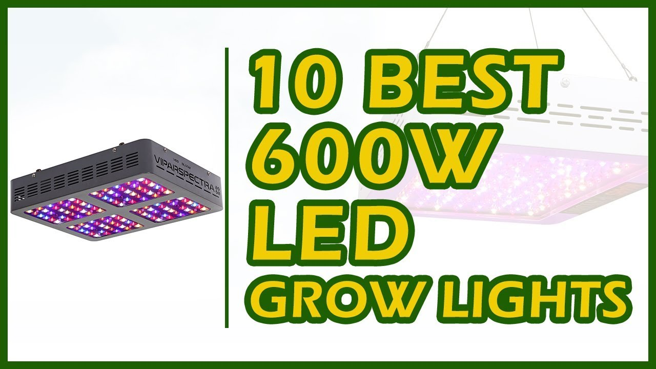10 Best 600W LED Grow Lights Reviews 2018