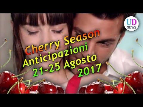 Cherry Season, puntate