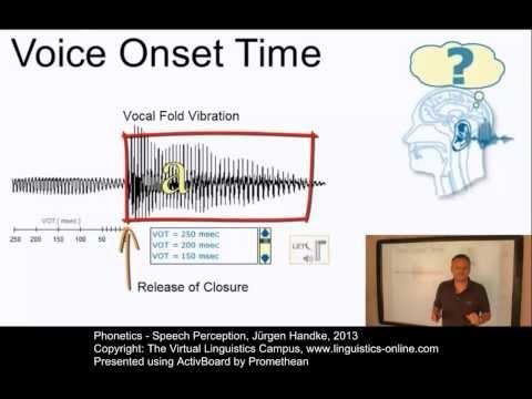 PHO130 - Speech Perception